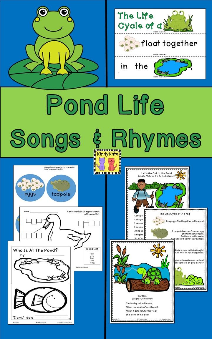 Pond Life: Songs & Rhymes | Finger plays, Pond and Frogs