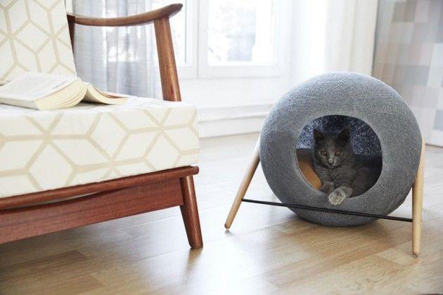 Design Voor Katten : Design kattenmand van meyou paris gimmii cat stuff