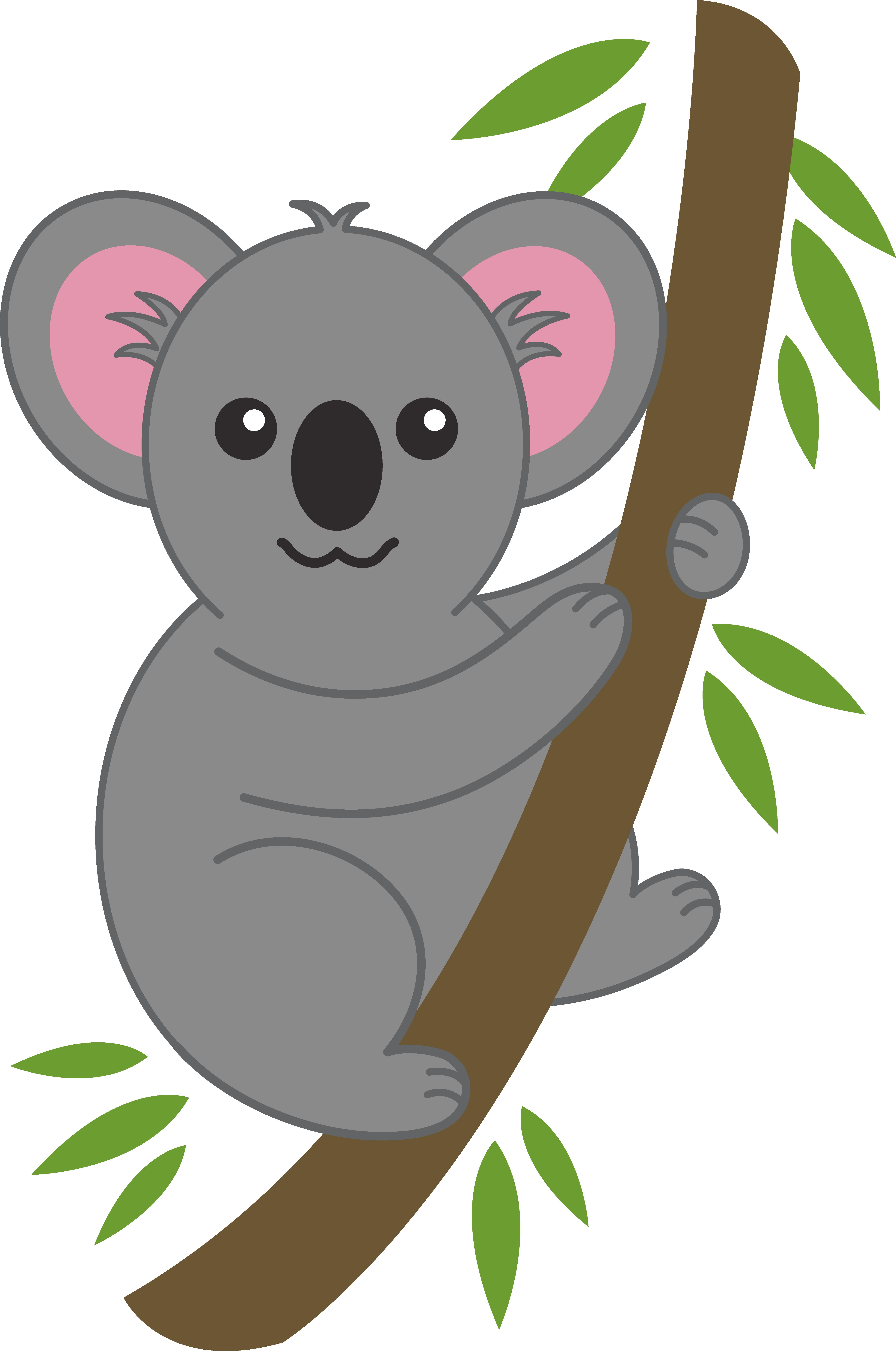 koala bear clip art cute koala on tree branch free clip art [ 5678 x 8554 Pixel ]