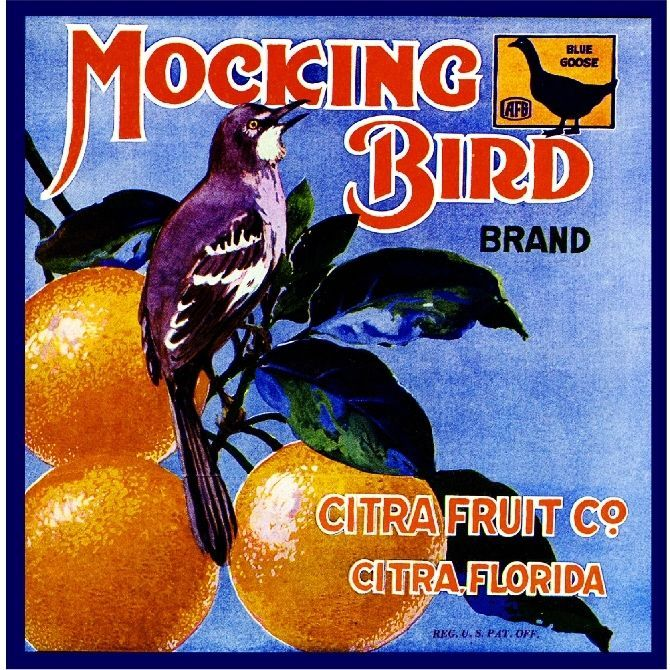 Cucamonga Upland Owl Brand Bird Orange Citrus Fruit Crate Label Art Print