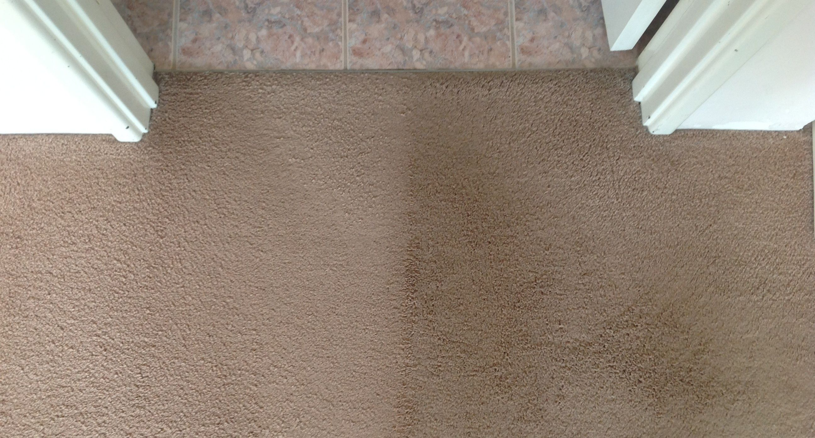 the visual benefits of carpet steam cleaning before u0026 after doubleview perth