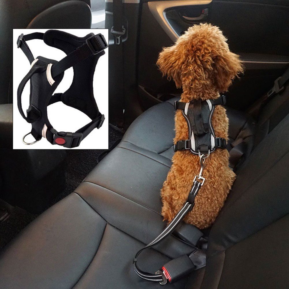 Best Front Range Dog Harness Car Safety Vehicle Pet Harness