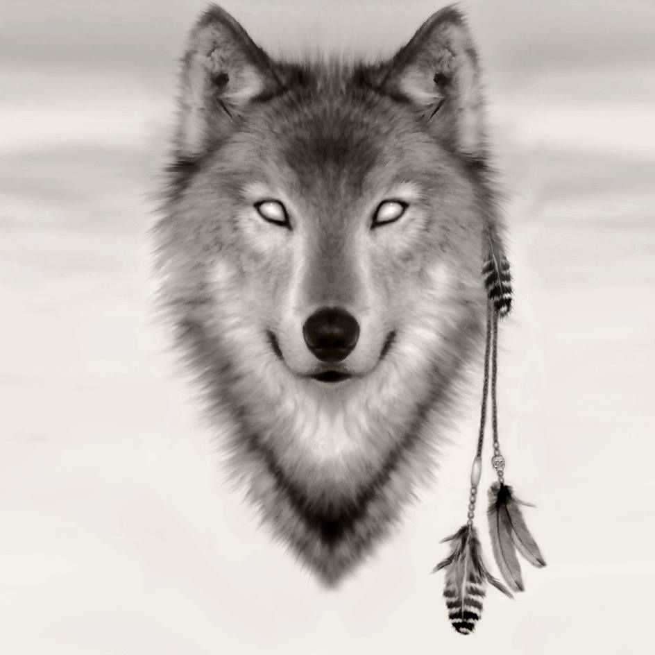 Pin By Christian Krotzer On Wolven Wolf Spirit Wolf Tattoos Native American Wolf