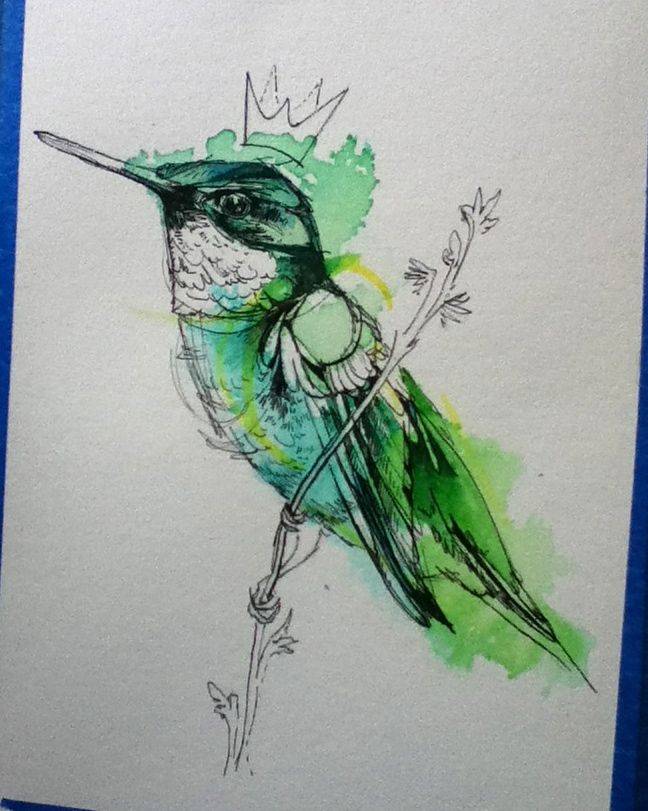Roughly Drawn Things Decided To Re Do The Hummingbird King