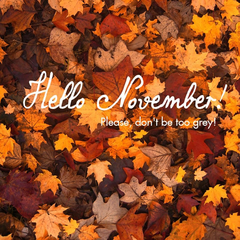 Hello November! Please Donu0027t Be To Grey! : ) #justaway