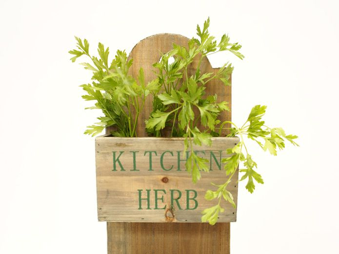 Jardinera colgante siembra tus plantas arom ticas para for Plantas aromaticas para cocinar