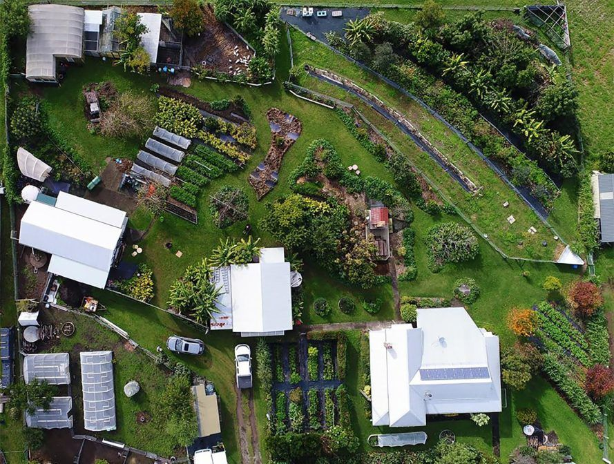 1-acre permaculture farm in Australia feeds 50 families ...