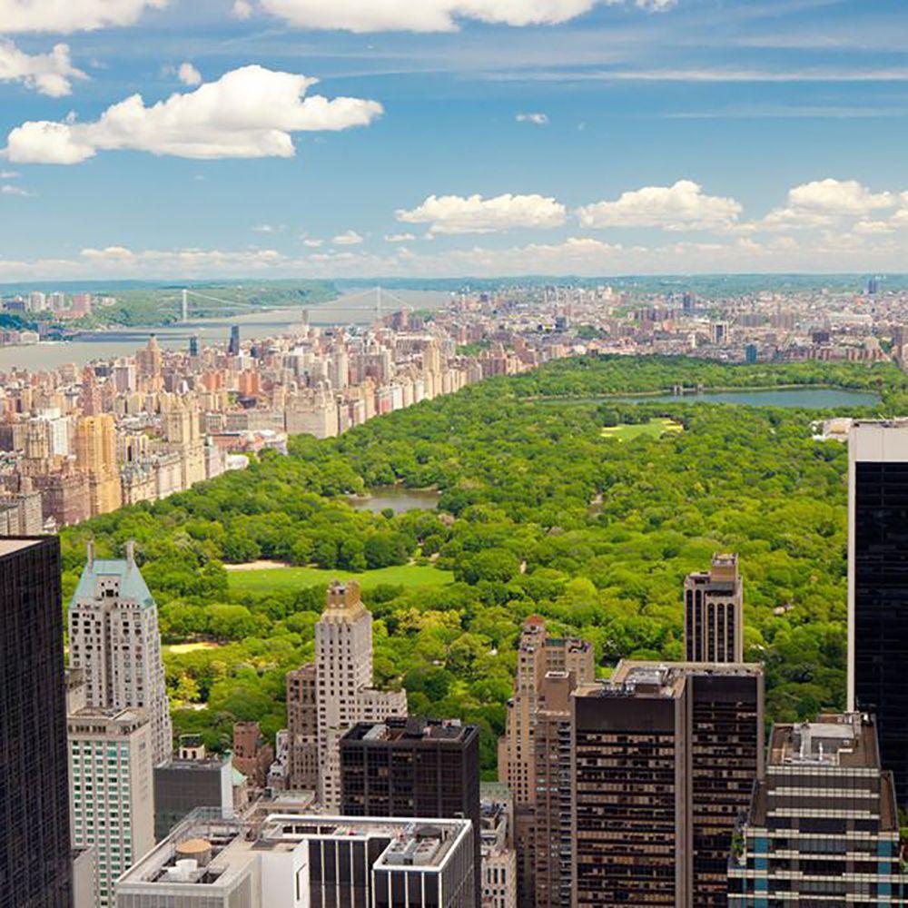 ارزش املاک سنترال پارک نیویورک New York City Tours New York Travel New York Central