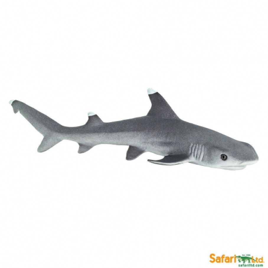 This slender shark figure is posed as if twisting its way through the coral and rocks of the reef floor. This hand-painted figure captures the unique blunted snout and sleek body of the whitetip reef shark.