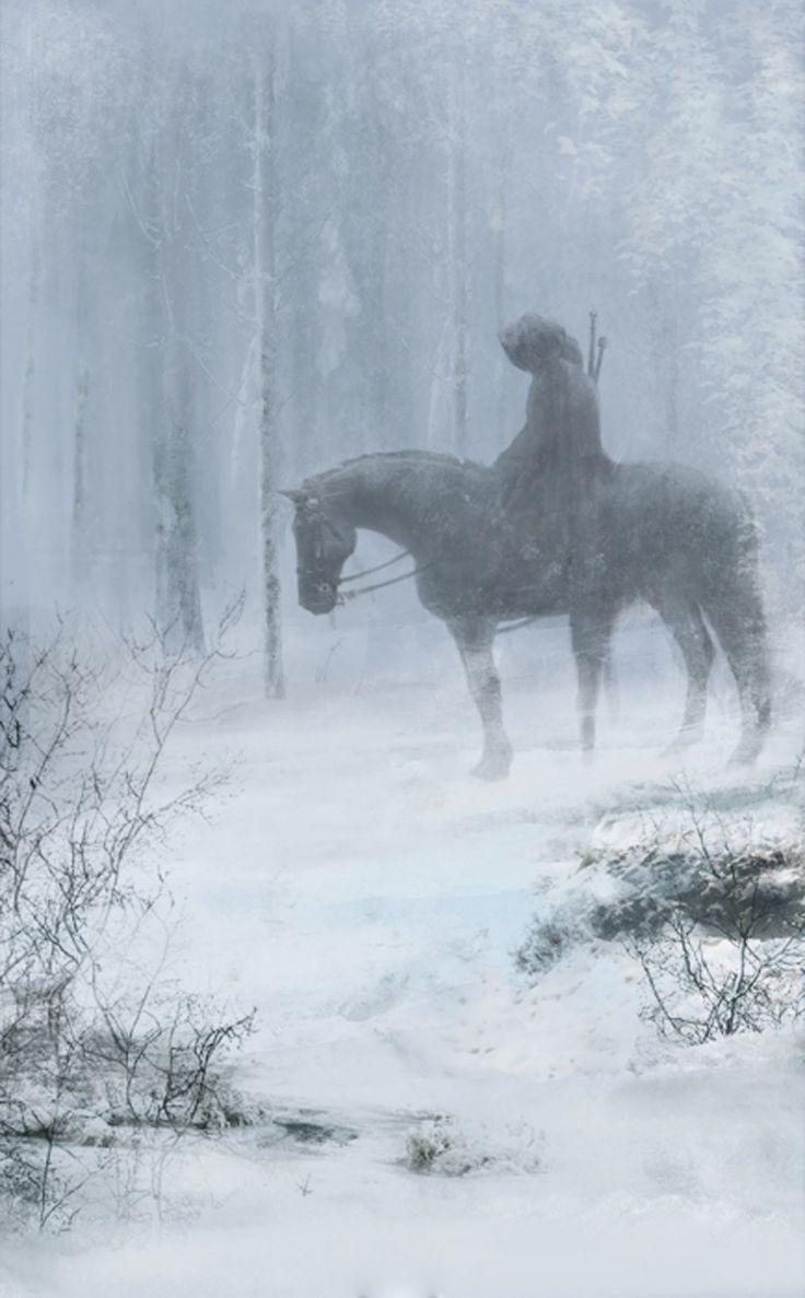 Amazing Wallpaper Horse Snow - da7a1793ef949bad744f9ce7dd317f05  Collection_59871.jpg