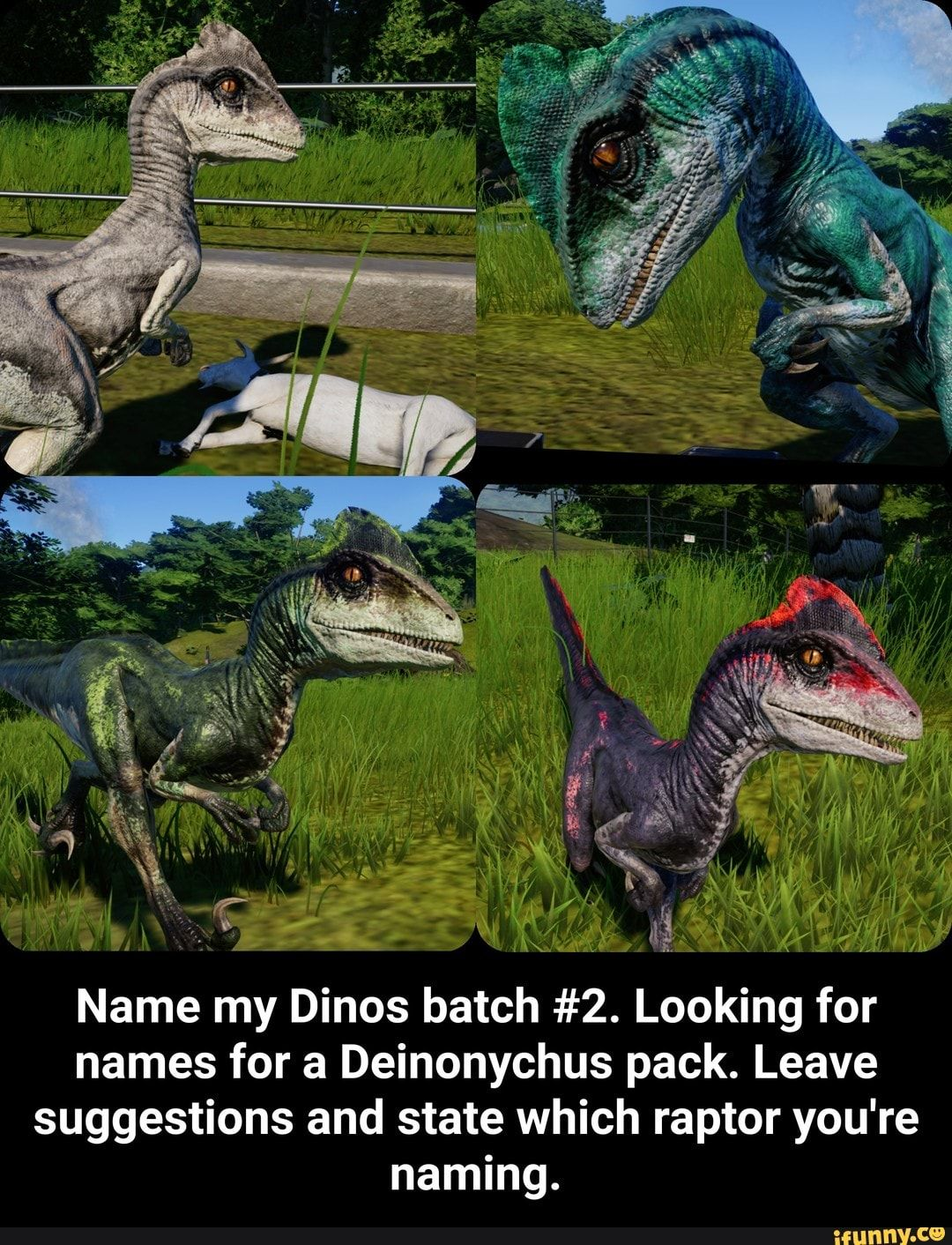 Name My Dinos Batch 2 Looking For Names For A Deinonychus Pack