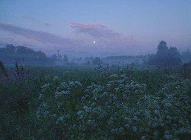 #landscapepics