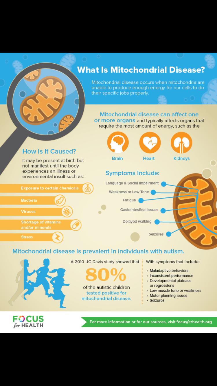 Mito and ASD Mitochondrial disease