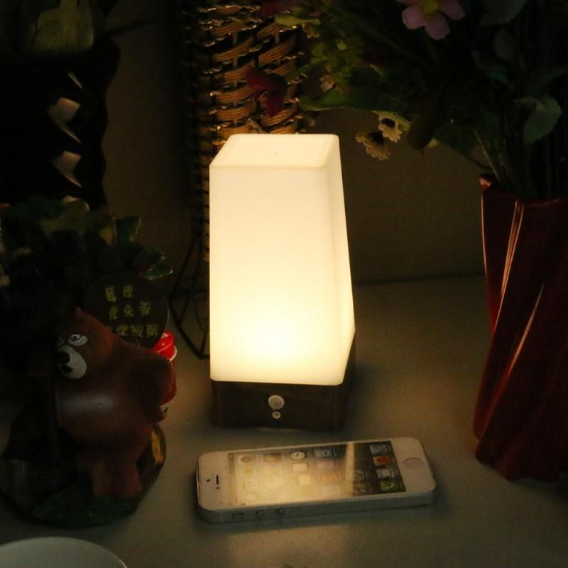 Retro Led Night Light Wireless Pir Motion Sensor Indoor Outdoor Battery Operated Sensitive Portable Moving Table Lamp Led Night Light Night Light Lights