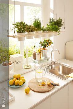 Basilikum Schnittlauch und Co immer griffbereit BOSCH zeigt euch wir ihr im Handumdrehen ein dekoratives Hängeregal für eure Küchenkräuter baut - decordiyhome.com/stuhle #diydecor
