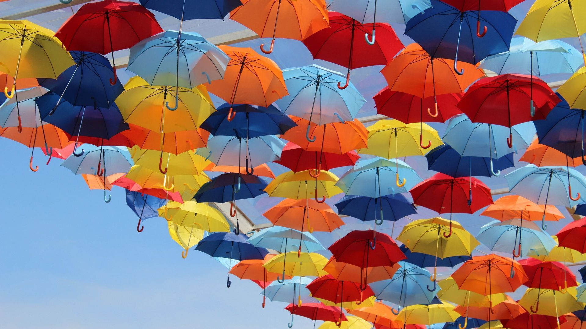 Umbrellas Collection See All Wallpapers Wallpapers Background Other Umbrella Wallpaper Background