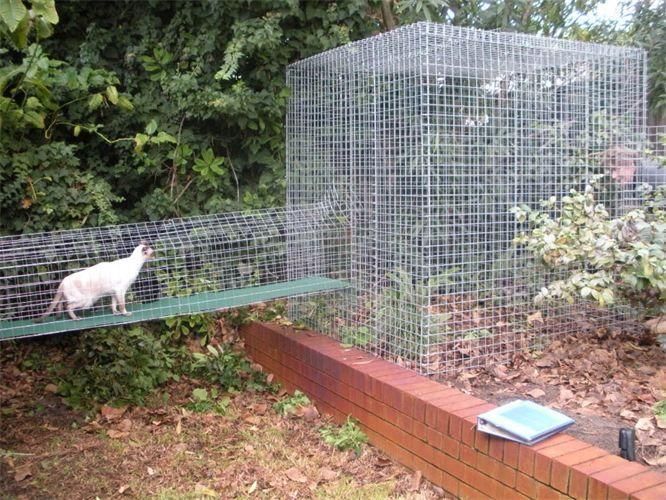 Diy Cat Enclosure Tower enclosure