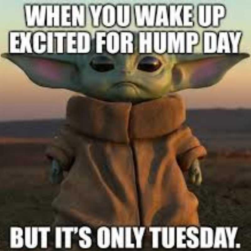 20 Hump Day Memes To Help You Laugh Thru Wednesday In 2021 Funny Hump Day Memes Funny Friday Memes Hump Day Meme