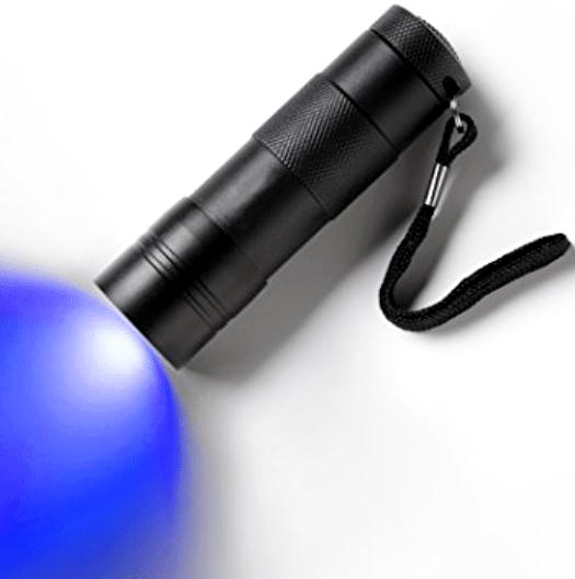 Using a Blacklight To Find Cat & Dog Urine Odor Spots