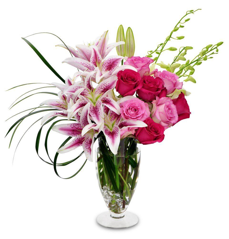 Morrison's Flowers & Gifts - Williamsburg, VA, United States