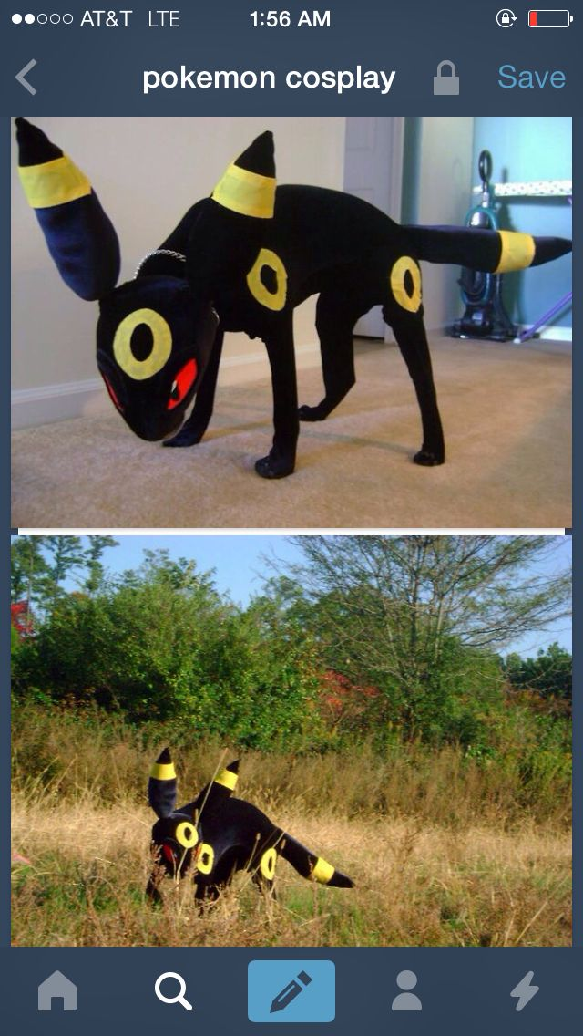 A Guy Made Am Umbreon Costume For His Dog Pokemon Cosplay