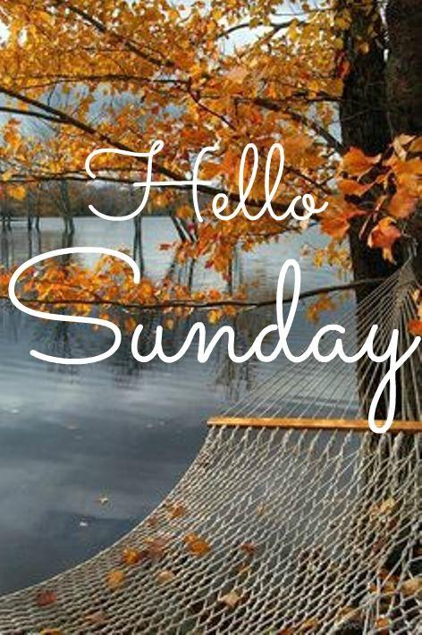 Happy Sunday coastal lovers ~ | Happy sunday quotes, Hello