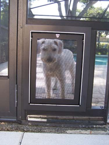 Security Boss Sb4 Pet Screen Door Used In Lanais Screened Porches