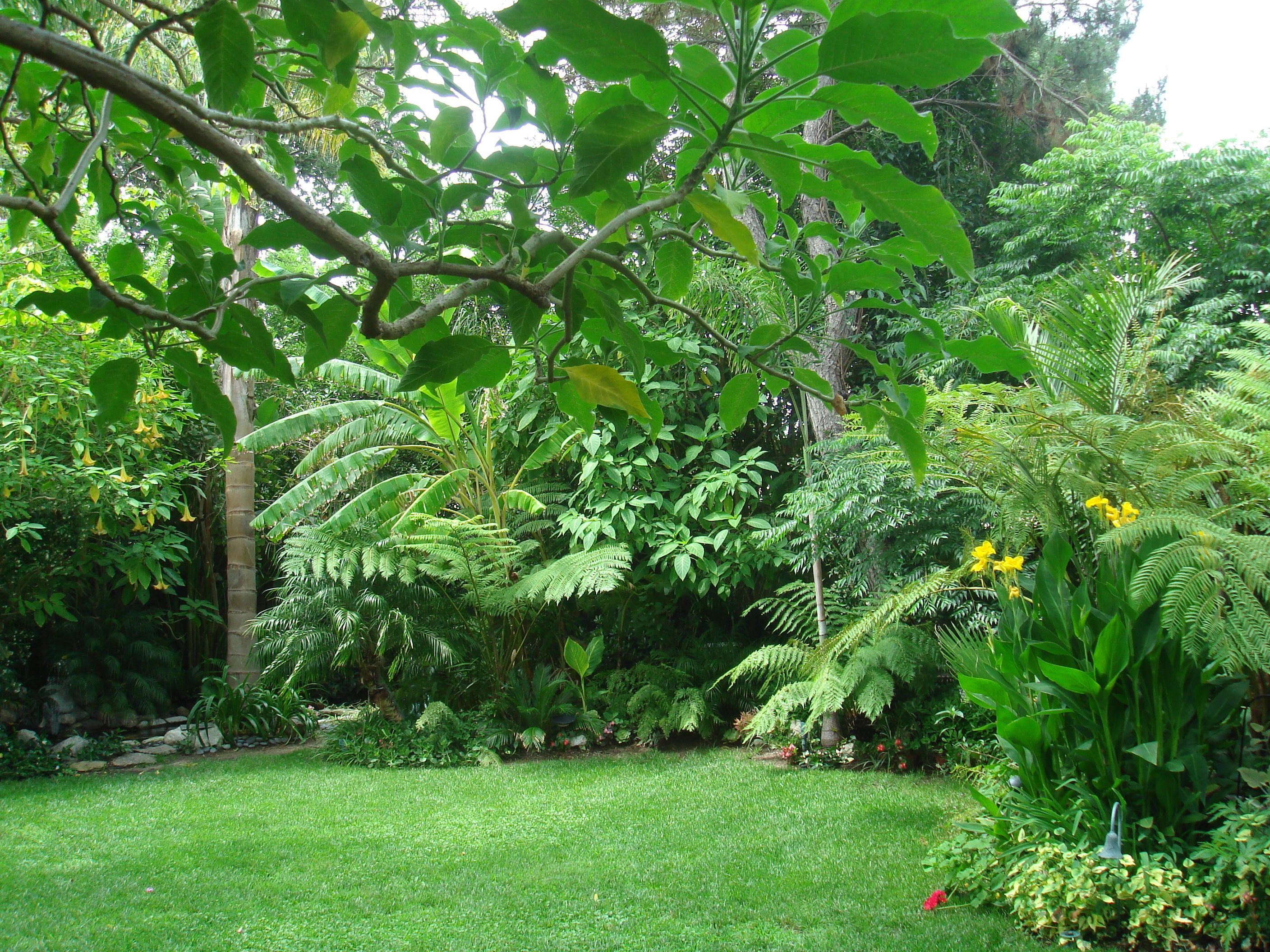 I like the back yard palms and moisture loving flowers for Tropical garden design