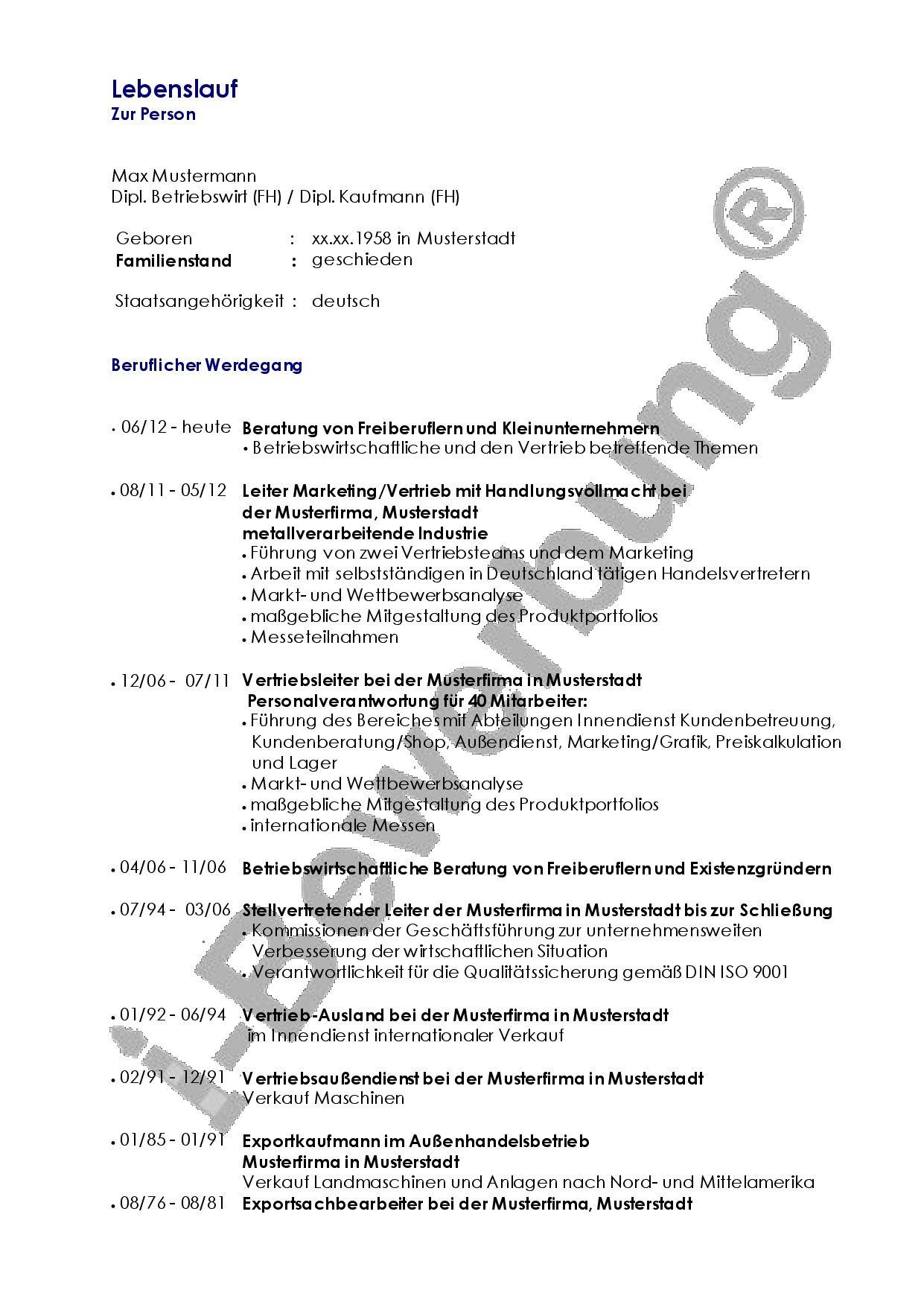 Lebenslauf Vorlage Zur Initativbewerbung Als Vertriebsleiter Lebenslauf Lebenslauf Beispiele Beruflicher Werdegang