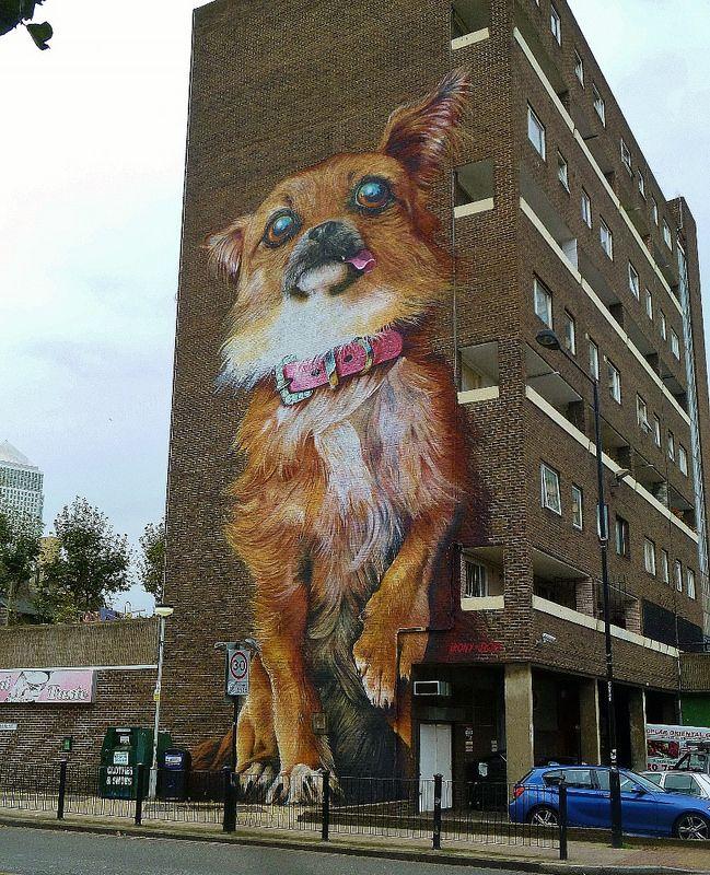 Wacky Chihuahua Chihuahua Art Street Art Dog Art