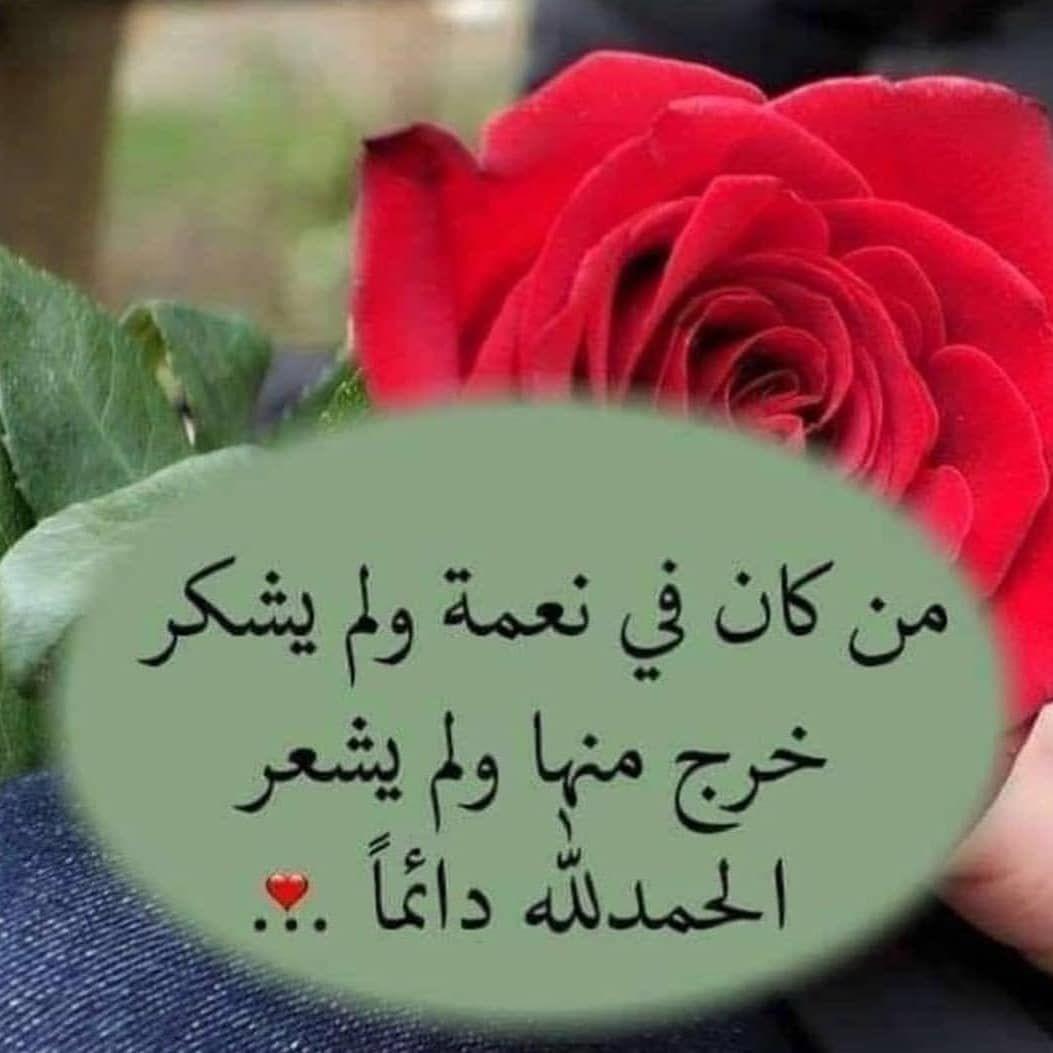 عانيت بسكات الخاص ممنوع On Instagram الحمدلله دائما وابدا Cool Words Islam Quran Arabic Quotes