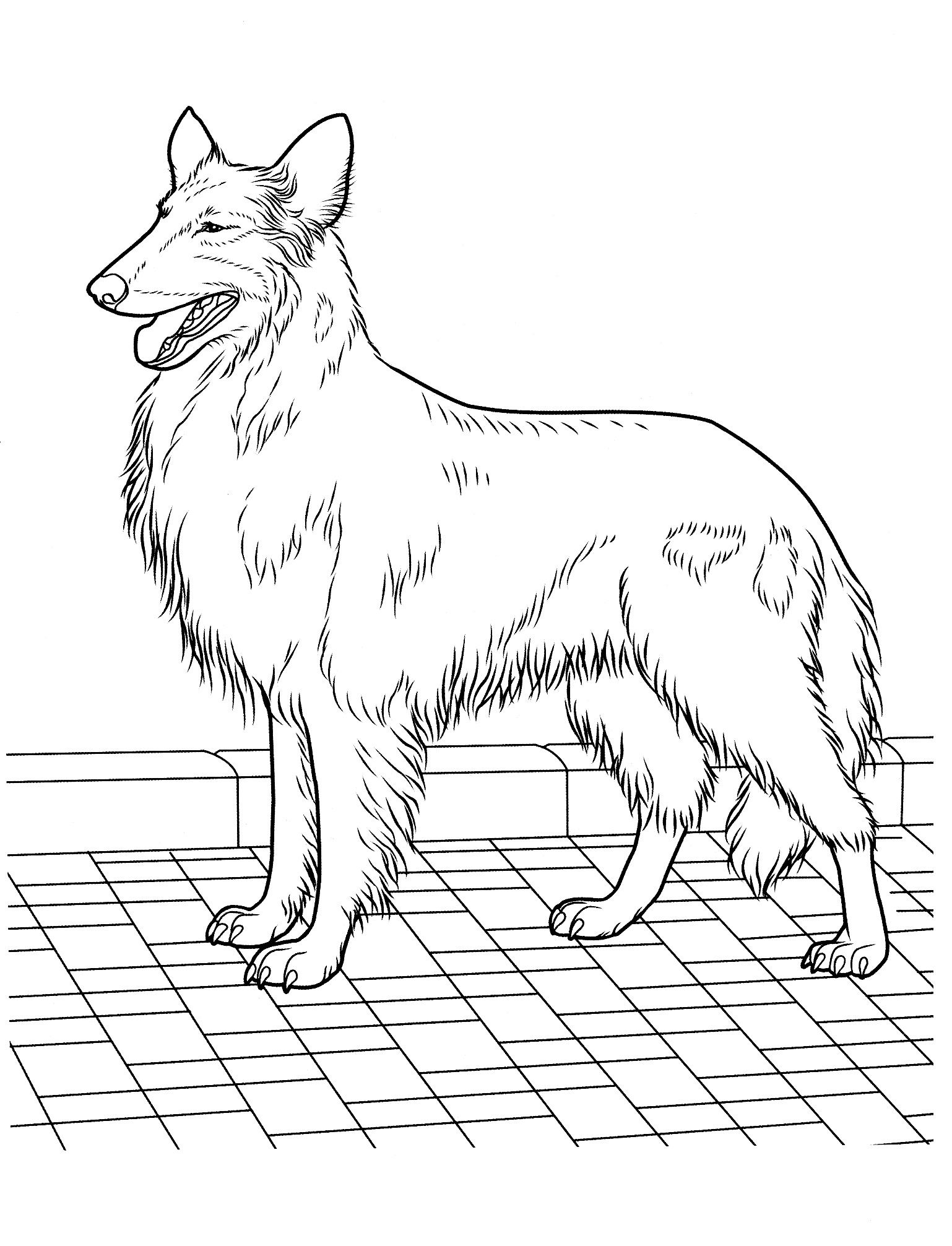 dog_coloring_pages_22 Teenagers coloring pages | Quilts | Pinterest ...