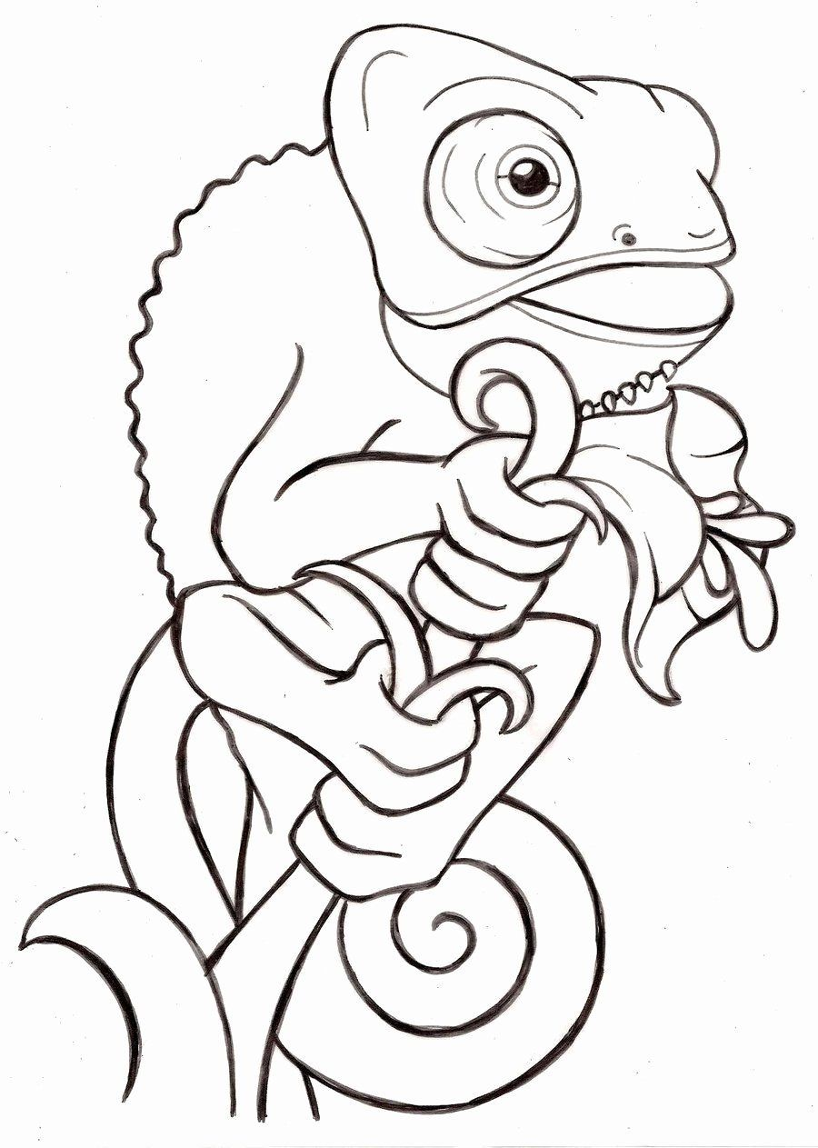 Coloring Cartoon Lizard in 2020 Cartoon lizard