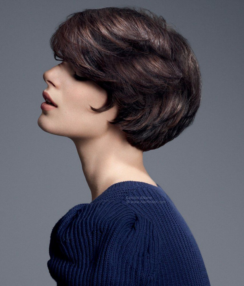 Short Brunette Hairstyles Pinsteve Lim On Hairstyle  Pinterest  Short Haircuts Short