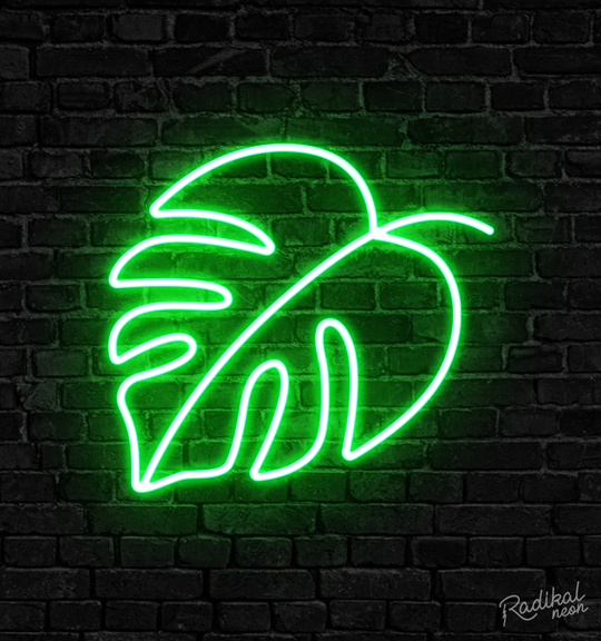 Our most popular LED Neon Signs!
