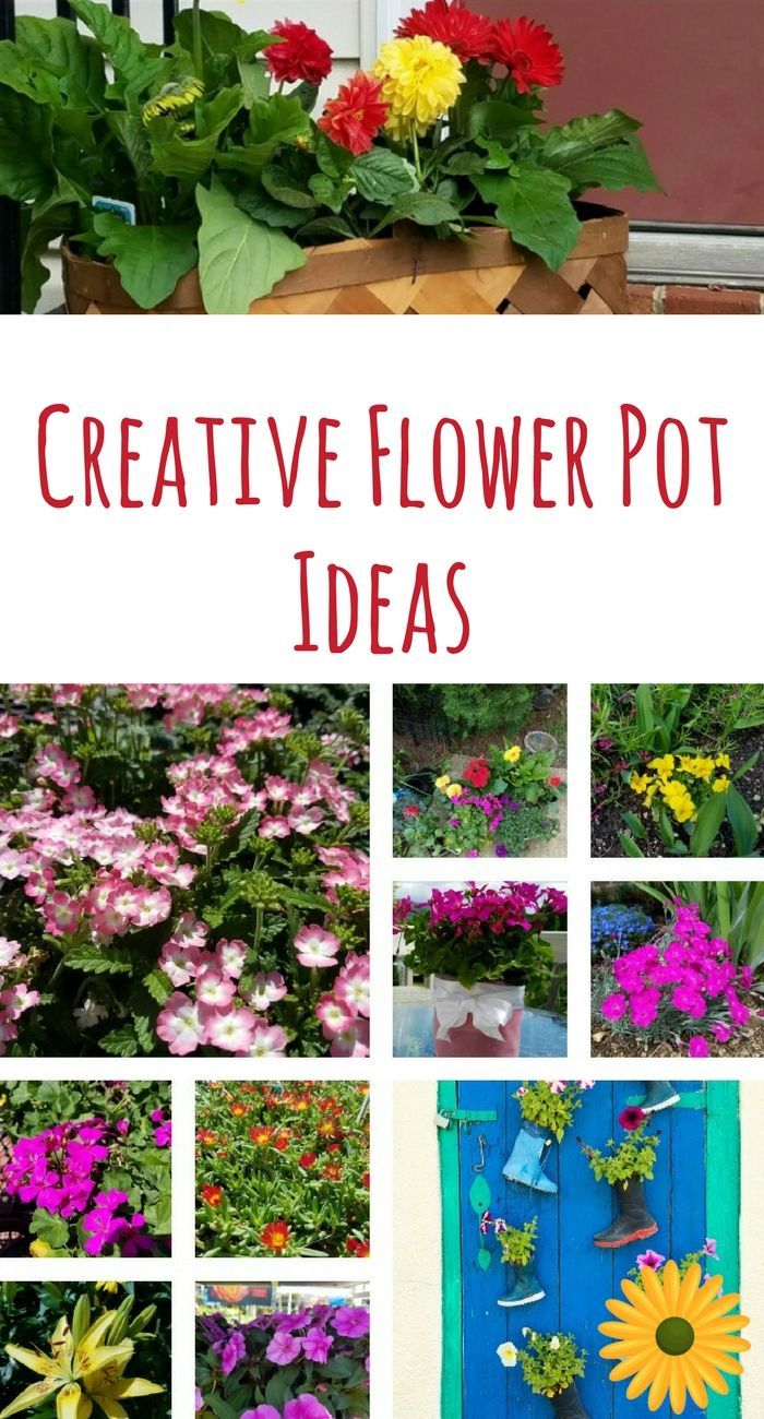 Creative Flower Pot Ideas That Add Color To Your Space Flower