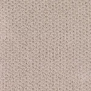 Elegant Basement Carpet Home Depot