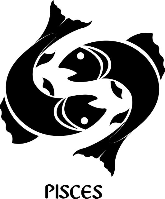 Pisces Zodiac Signs Symbol Premium Wall Decor Decal Signs 4 Half