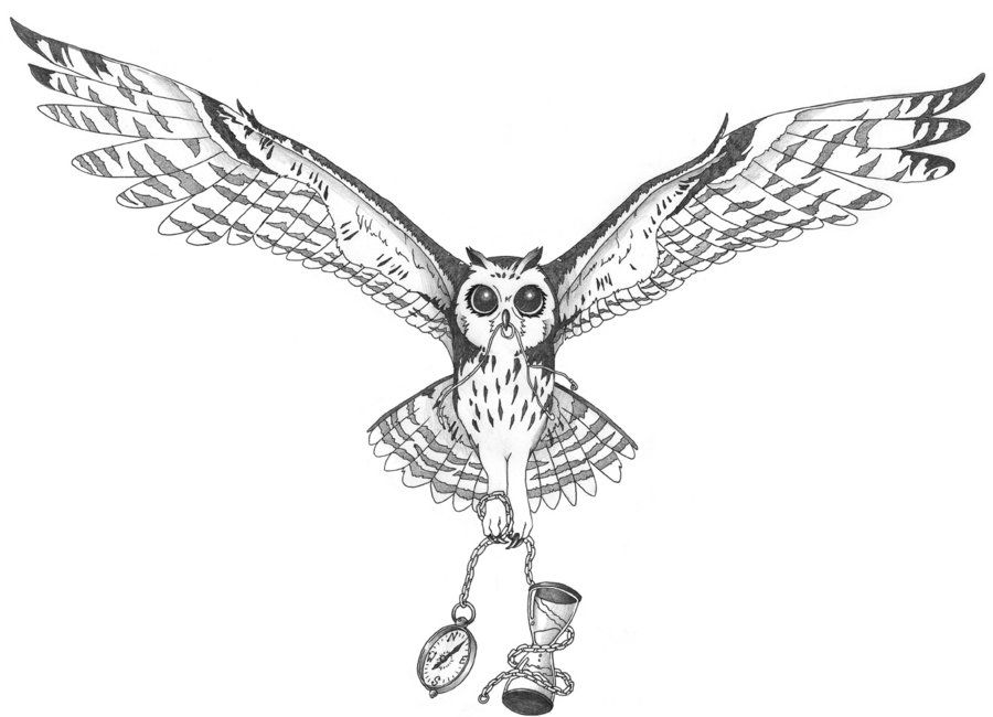 line drawings horse and owl together owl tattoo ii by pottercreep2nd on deviantart