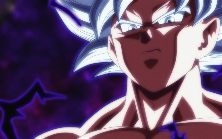 Los Mejores Fondos De Pantalla De Goku Migatte No Gokui Hd: Descargar Fondos De Pantalla Ultra Instinto De Goku, 4k