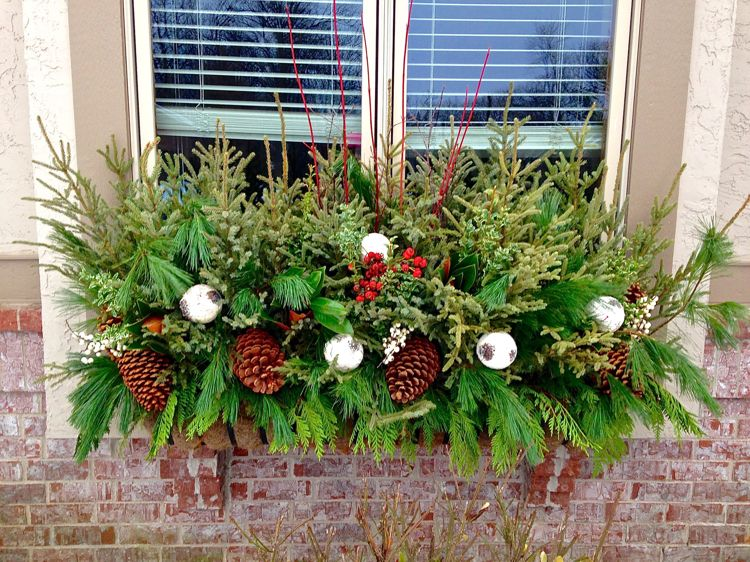 Blumenkasten Weihnachtlich Dekorieren blumenkasten weihnachtlich dekorieren wintergrün üppig zapfen