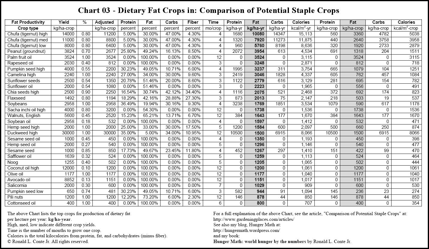 11 Food Calorie Chart Templates Pdf Doc Free Premium Templates