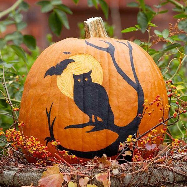 40 Cute And Easy Pumpkin Painting Ideas 4