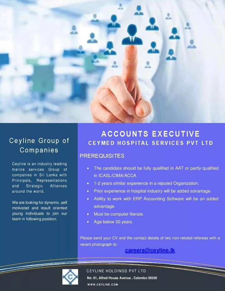 Accounts Executive Account Executive Executive Jobs Accounting Jobs
