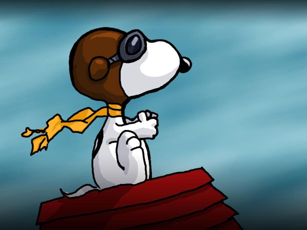 Snoopy Red Baron Peanuts Comic Strip I Love Snoopy And His Alter