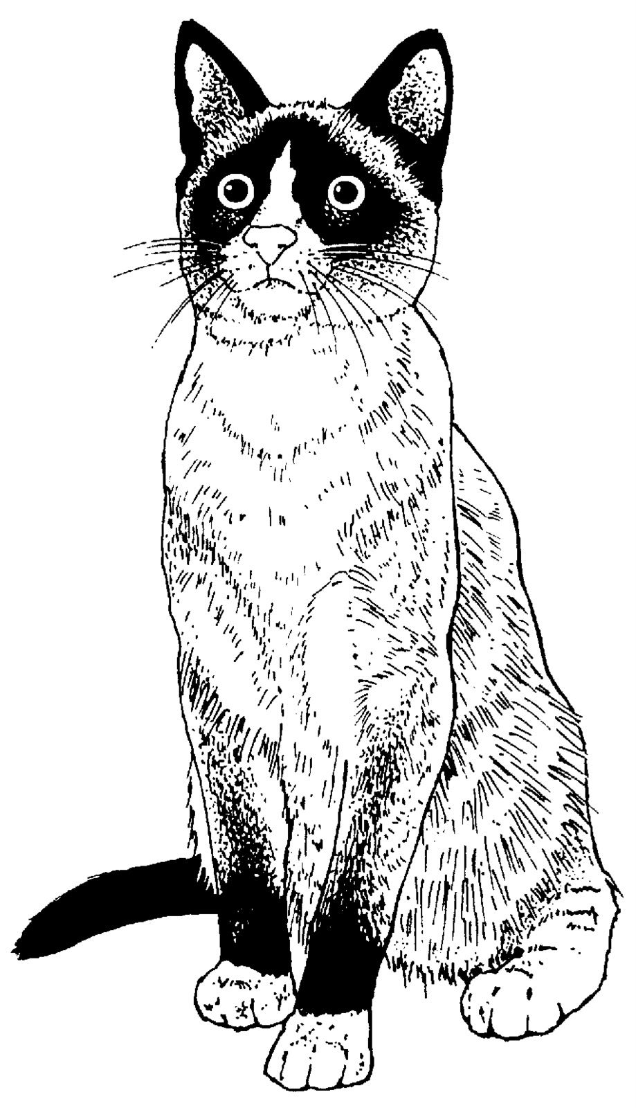 Printable Cat - Sisters' Warehouse