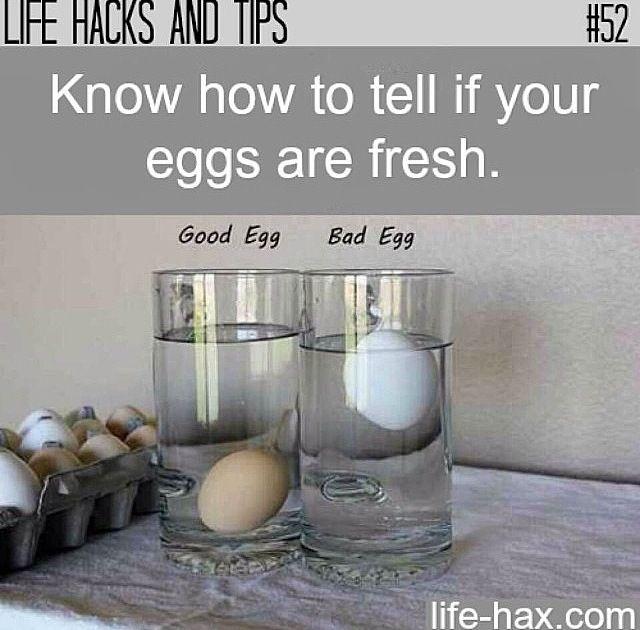 Para se certificar se os ovos estão frescos, mergulhe-os em uma vasilha com água