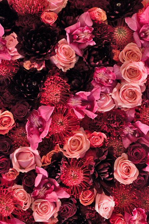 Flower Blog