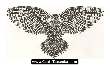 celtic owl - Google Search | Celtic owl tattoo, Celtic owl