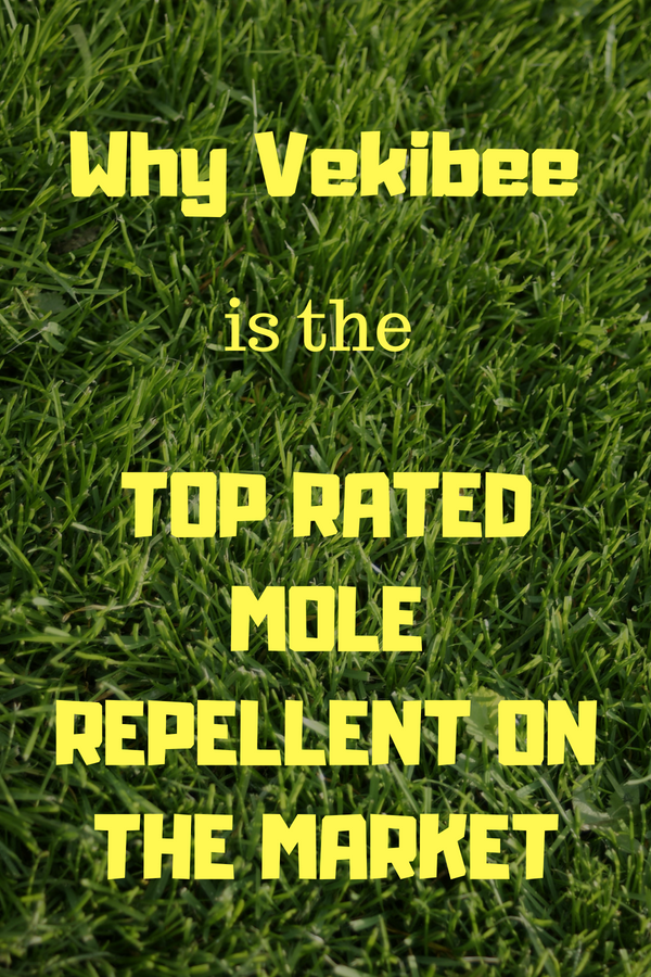 How to get rid of moles in yard? You can repel moles humanely and easily with sonic mole repellers like Vekibee. Read more about why Vekibee is the highest ...
